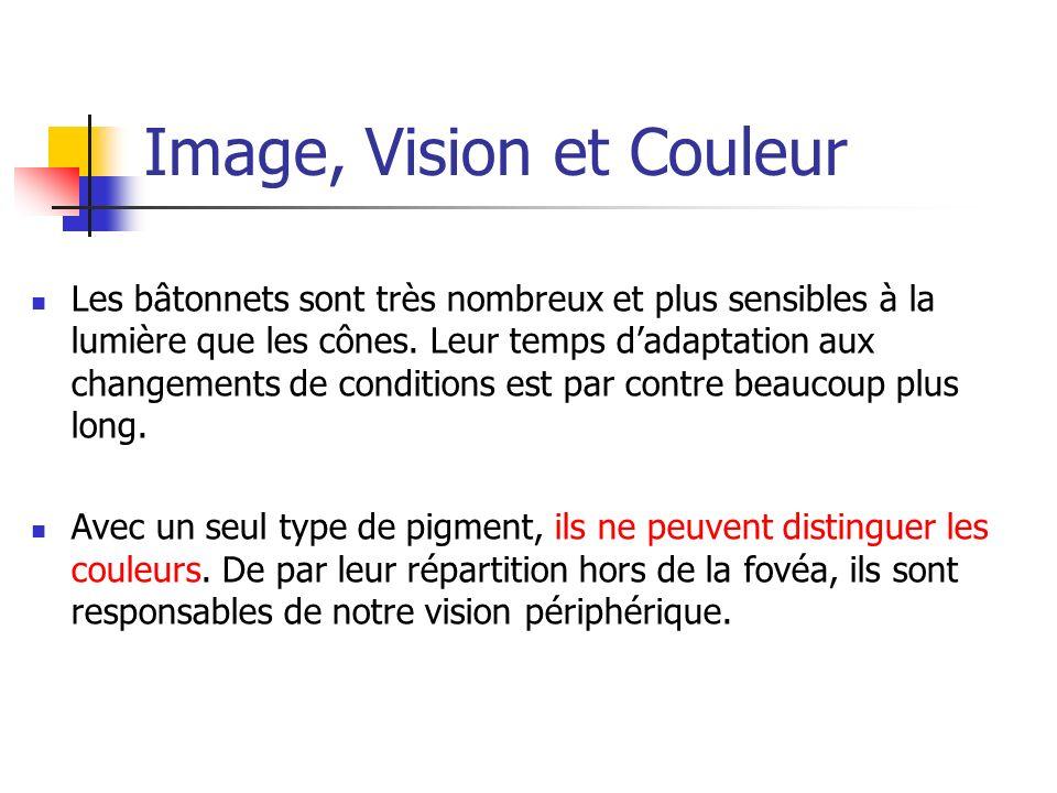 Image, Vision et Couleur Les bâtonnets sont très nombreux et plus sensibles à la lumière que les cônes. Leur temps dadaptation aux changements de cond