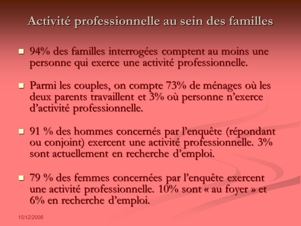 15/12/2008 Activité professionnelle au sein des familles 94% des familles interrogées comptent au moins une personne qui exerce une activité professionnelle.