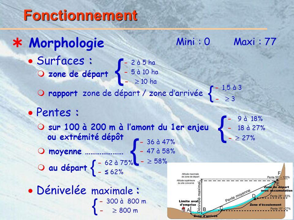 14/21 Fonctionnement Morphologie Mini : 0Maxi : 77 : Surfaces : zone de départ rapport zone de départ / zone darrivée : Pentes : sur 100 à 200 m à lamont du 1er enjeu ou extrémité dépôt moyenne ………………… - 36 à 47% - 47 à 58% - 58% : Dénivelée maximale : { - 10 ha - 5 à 10 ha - 2 à 5 ha { - 3 - 1,5 à 3 { - 9 à 18% - 18 à 27% - 27% { au départ - 62 à 75% - 62% { - 300 à 800 m - 800 m {