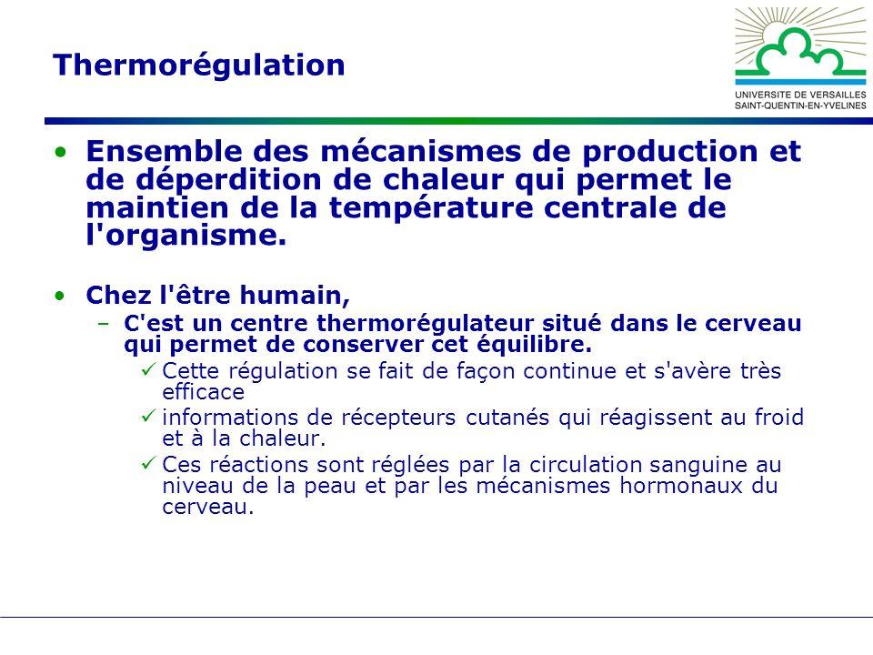 Thermorégulation Ensemble des mécanismes de production et de déperdition de chaleur qui permet le maintien de la température centrale de l'organisme.