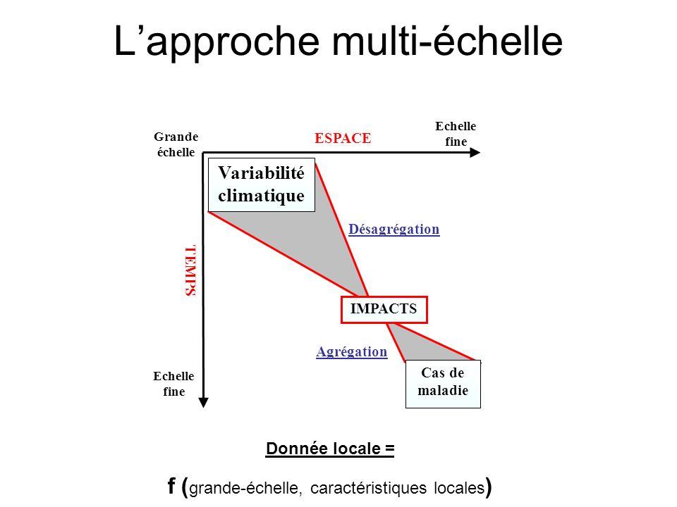 ESPACE Echelle fine Grande échelle Echelle fine TEMPS Désagrégation Variabilité climatique IMPACTS Cas de maladie Agrégation Lapproche multi-échelle D