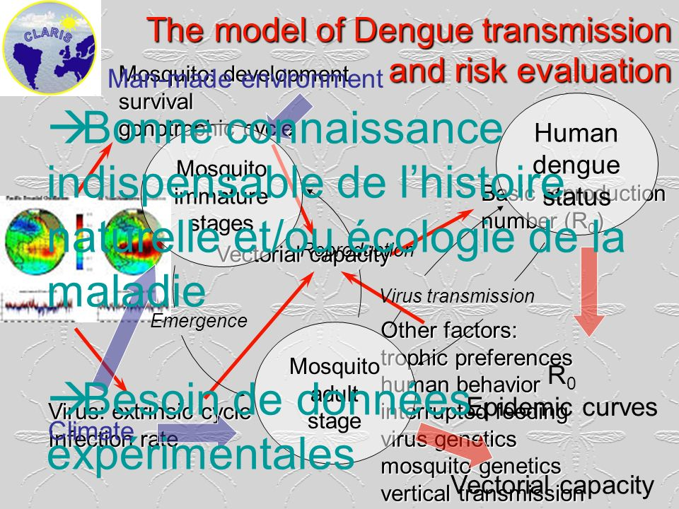 The model of Dengue transmission and risk evaluation Mosquito: development survival gonotrophic cycle Virus: extrinsic cycle Infection rate Vectorial