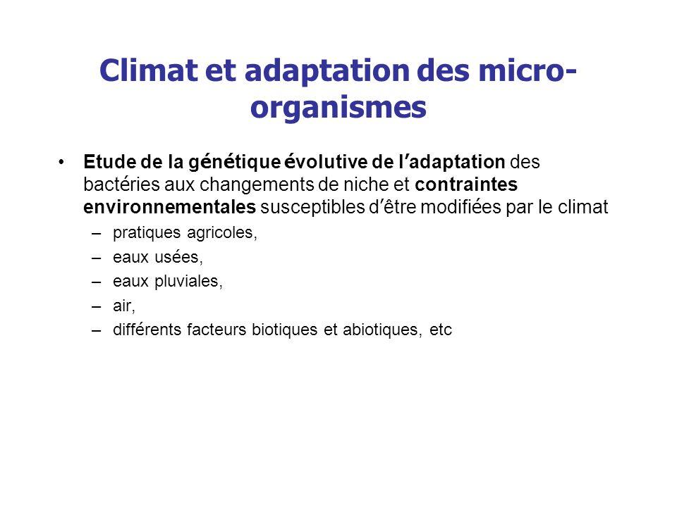 Climat et adaptation des micro- organismes Etude de la g é n é tique é volutive de l adaptation des bact é ries aux changements de niche et contrainte