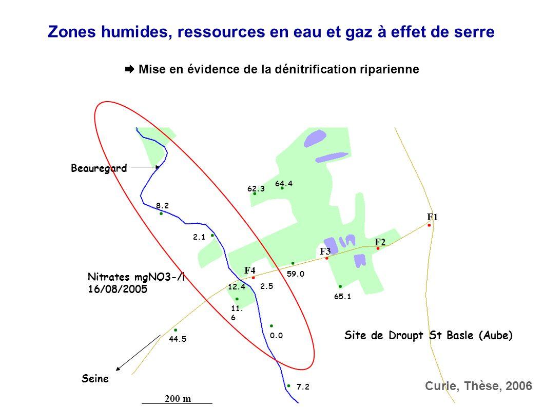 BV SeineBV Oise BV Aisne BV Marne BV Aube BV Yonne BV Loing BV Eure Beauregard Le Melda Canal saint Julien Seine Aube F1 F2 F3 F4 200 m 64.4 62.3 8.2 2.1 59.0 2.5 44.5 12.4 11.