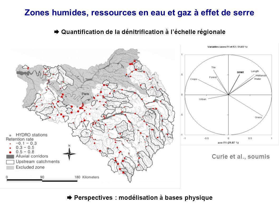 Zones humides, ressources en eau et gaz à effet de serre Quantification de la dénitrification à léchelle régionale Curie et al., soumis Perspectives : modélisation à bases physique