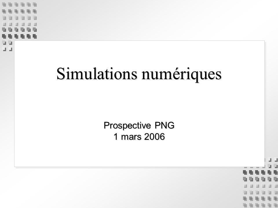 Simulations numériques Prospective PNG 1 mars 2006