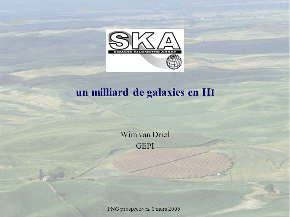 SKA Wim van Driel GEPI PNG prospectives, 1 mars 2006 un milliard de galaxies en H I