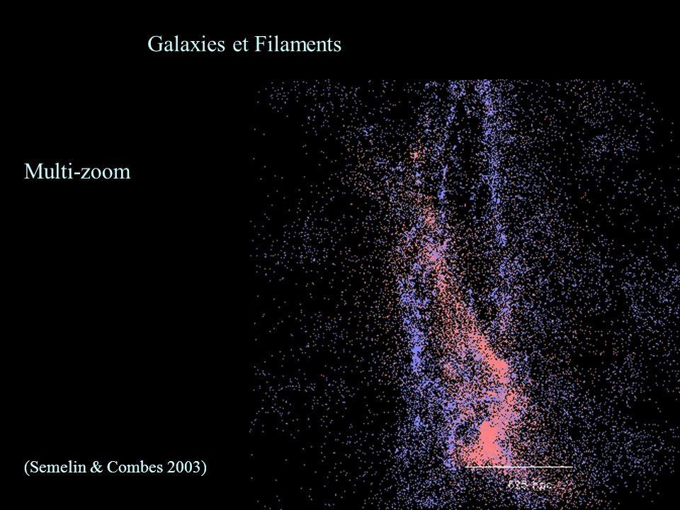 31 Galaxies et Filaments Multi-zoom (Semelin & Combes 2003)