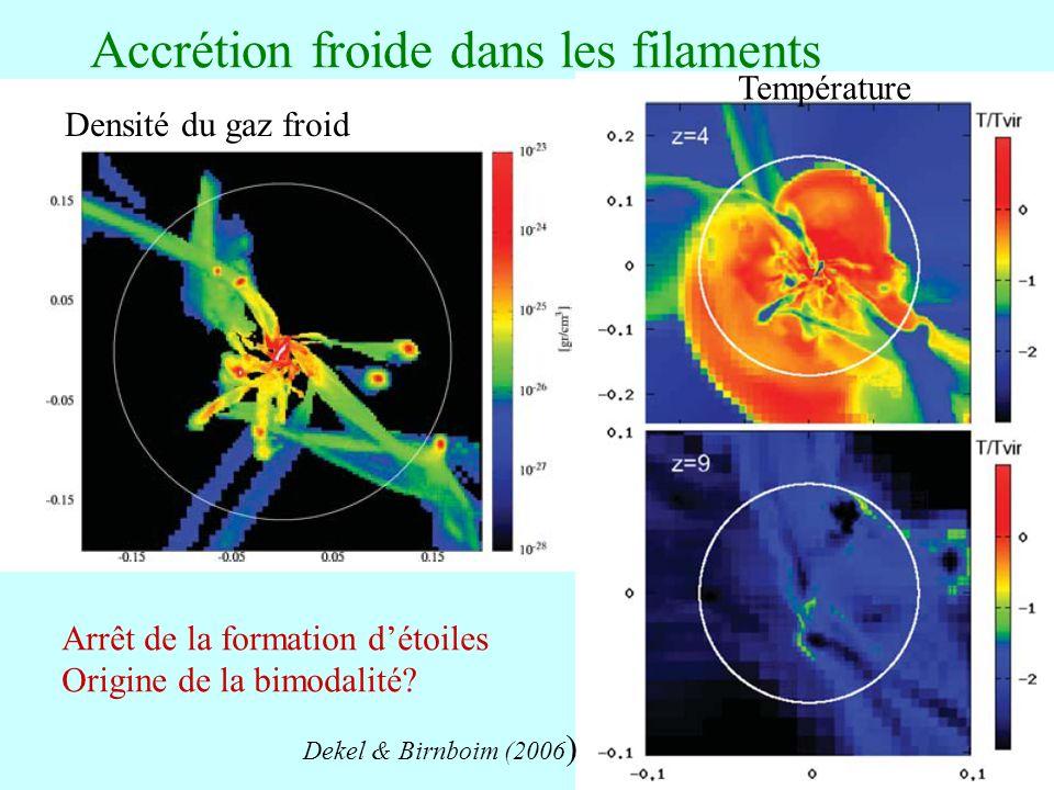 64 Accrétion froide dans les filaments Densité du gaz froid Température Dekel & Birnboim (2006 ) Arrêt de la formation détoiles Origine de la bimodalité