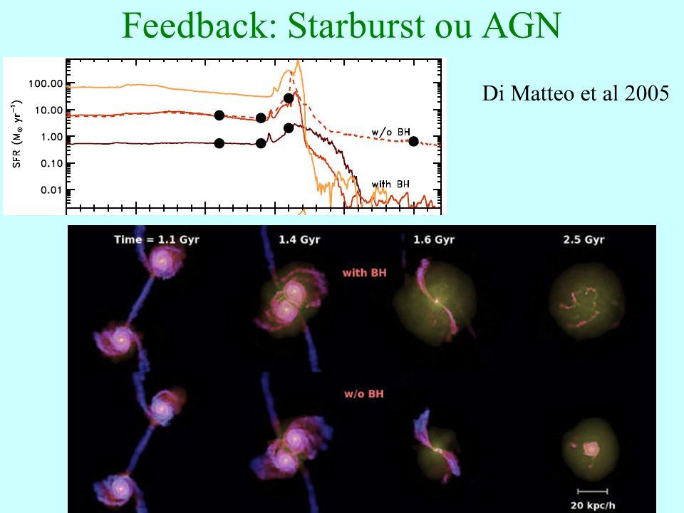 65 Feedback: Starburst ou AGN Di Matteo et al 2005