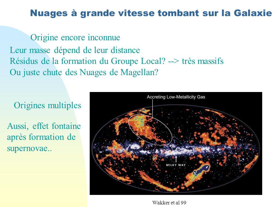 Nuages à grande vitesse tombant sur la Galaxie Origine encore inconnue Leur masse dépend de leur distance Résidus de la formation du Groupe Local.