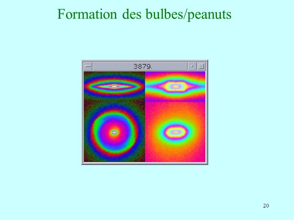 20 Formation des bulbes/peanuts