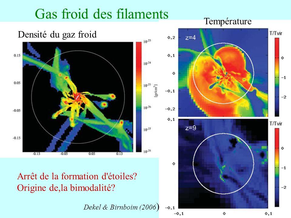 81 Gas froid des filaments Densité du gaz froid Température Dekel & Birnboim (2006 ) Arrêt de la formation d'étoiles? Origine de,la bimodalité?