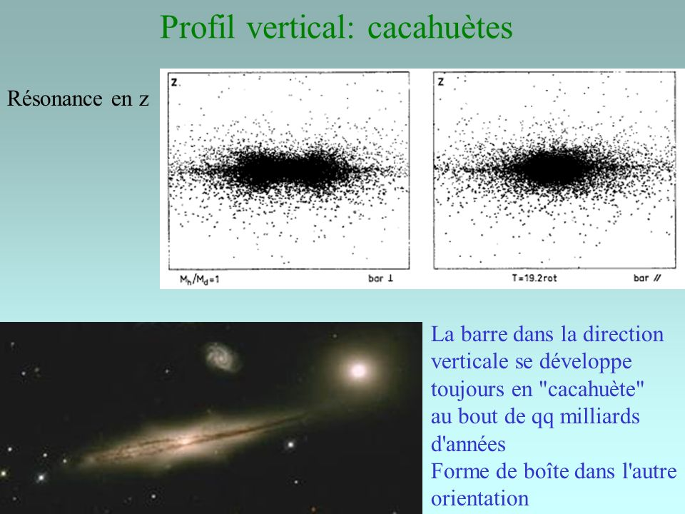 Profil vertical: cacahuètes La barre dans la direction verticale se développe toujours en cacahuète au bout de qq milliards d années Forme de boîte dans l autre orientation Résonance en z