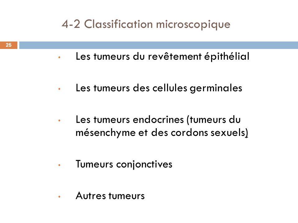 4-2 Classification microscopique 25 Les tumeurs du revêtement épithélial Les tumeurs des cellules germinales Les tumeurs endocrines (tumeurs du mésenc