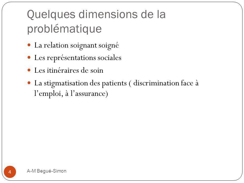 Quelques dimensions de la problématique La relation soignant soigné Les représentations sociales Les itinéraires de soin La stigmatisation des patient