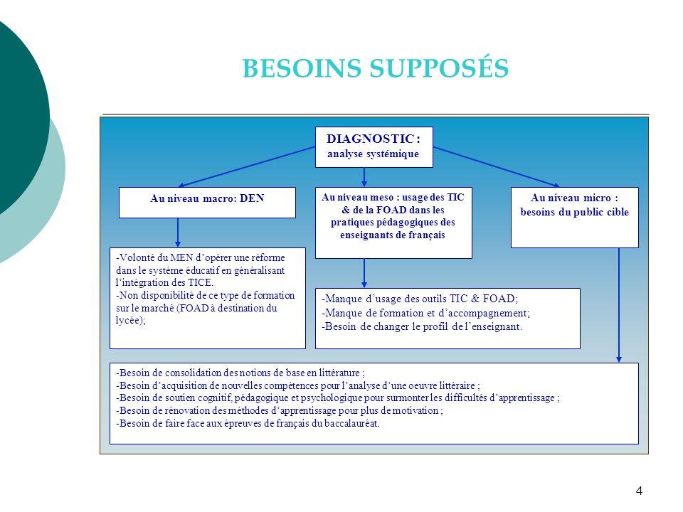 4 BESOINS SUPPOSÉS DIAGNOSTIC : analyse systémique Au niveau meso : usage des TIC & de la FOAD dans les pratiques pédagogiques des enseignants de fran