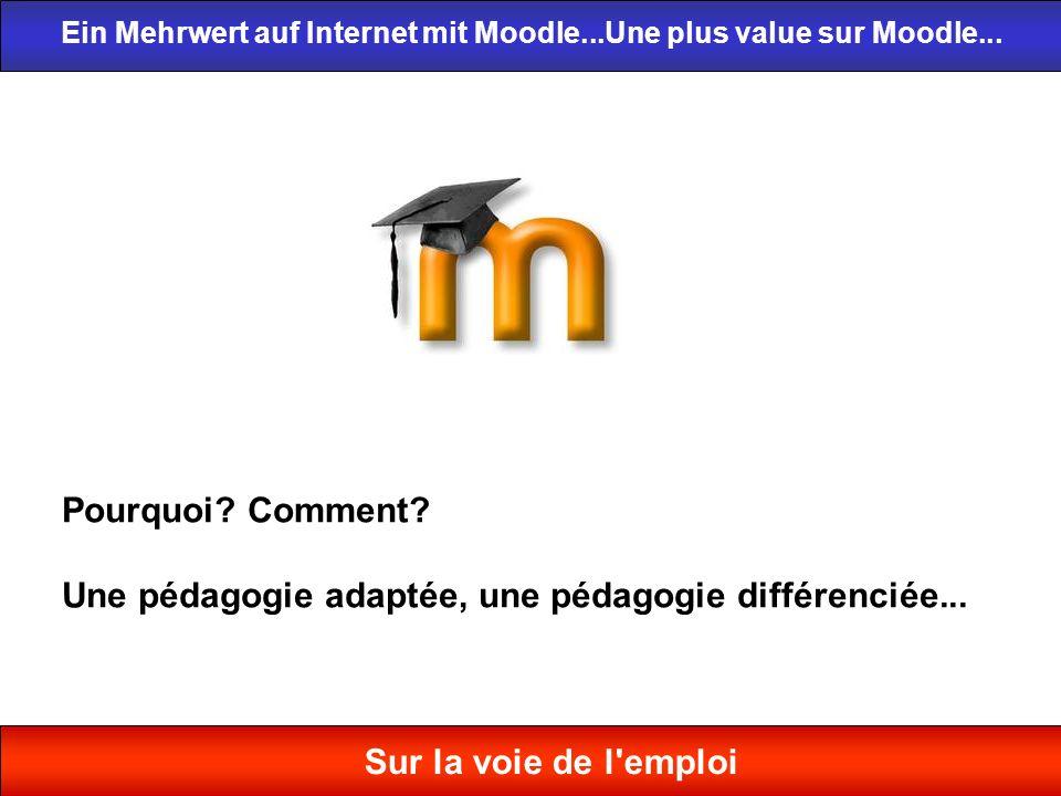 Pourquoi? Comment? Une pédagogie adaptée, une pédagogie différenciée... Ein Mehrwert auf Internet mit Moodle...Une plus value sur Moodle... Sur la voi