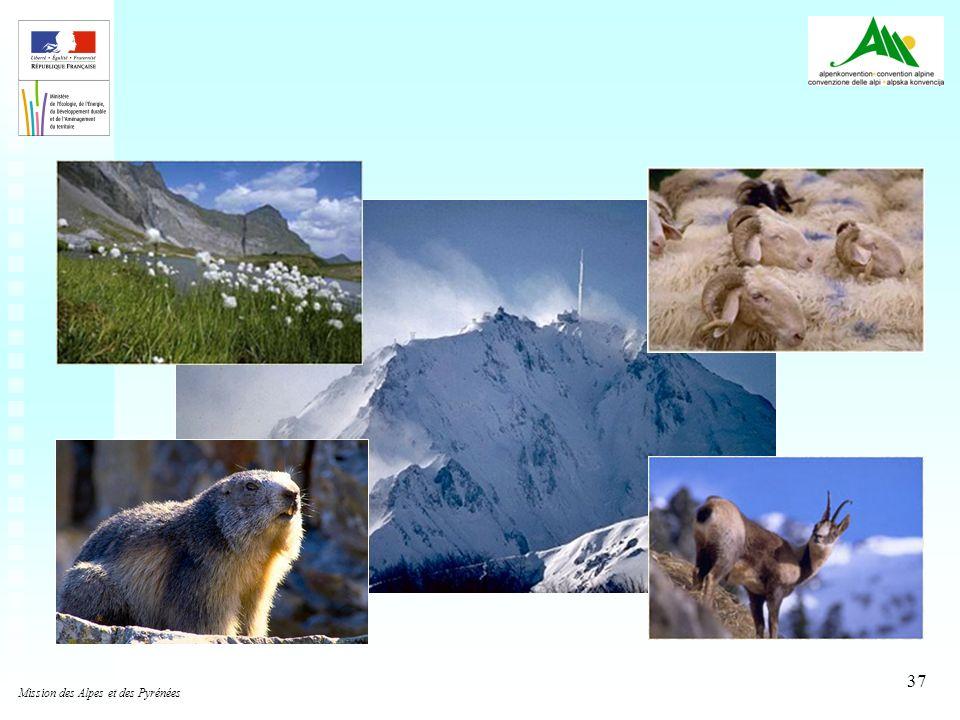 37 Mission des Alpes et des Pyrénées