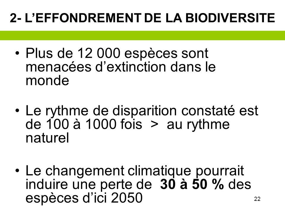 2- LEFFONDREMENT DE LA BIODIVERSITE Démographie +50% dici 2050, soit + 3 milliards dhab Demande croissante en ressources Energie, matières premières E