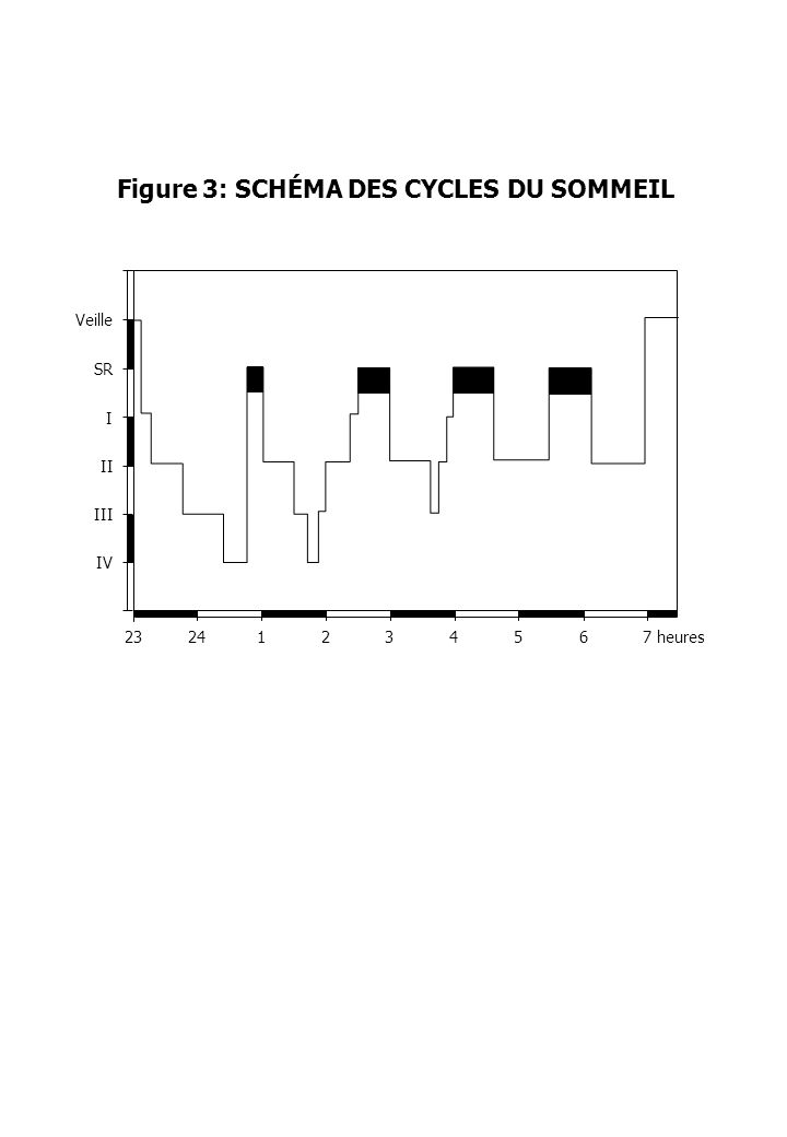 Figure 3: SCHÉMA DES CYCLES DU SOMMEIL 23241234567heures IV III II I SR Veille