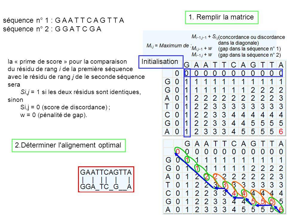 71 séquence n° 1 : G A A T T C A G T T A séquence n° 2 : G G A T C G A la « prime de score » pour la comparaison du résidu de rang i de la première sé