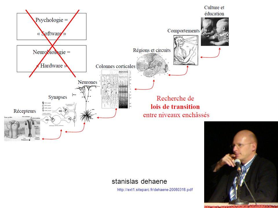 95 http://ext1.siteparc.fr/dehaene-20080318.pdf stanislas dehaene