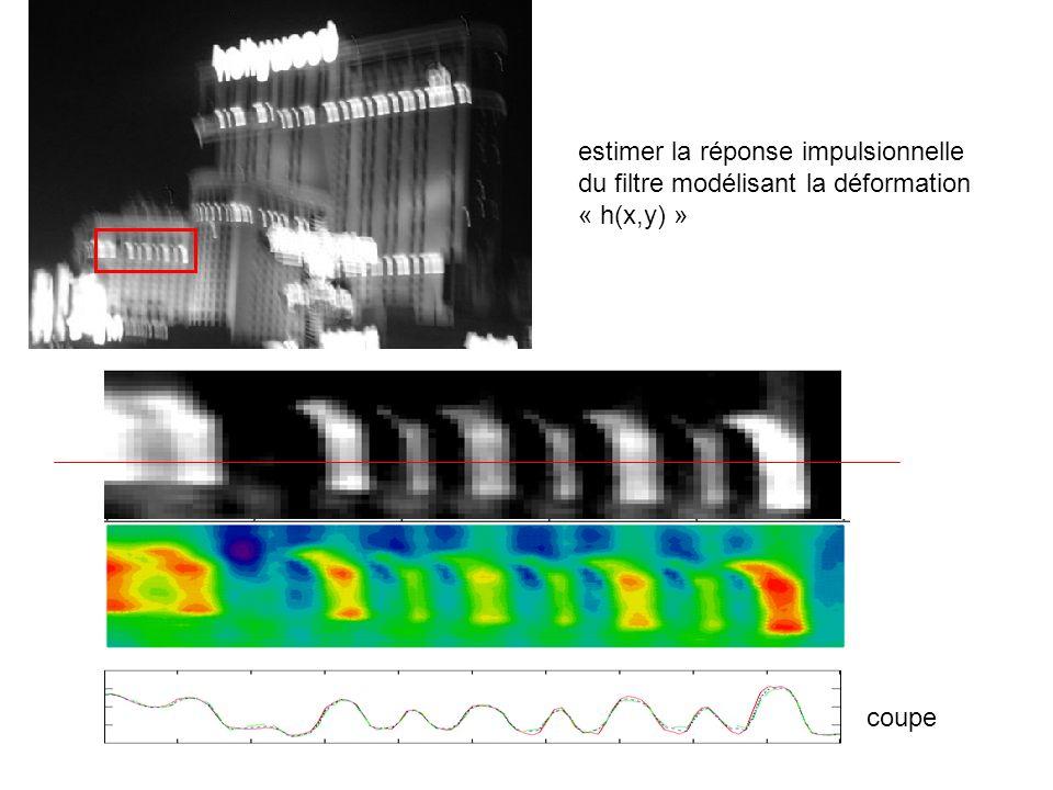 estimer la réponse impulsionnelle du filtre modélisant la déformation « h(x,y) » coupe