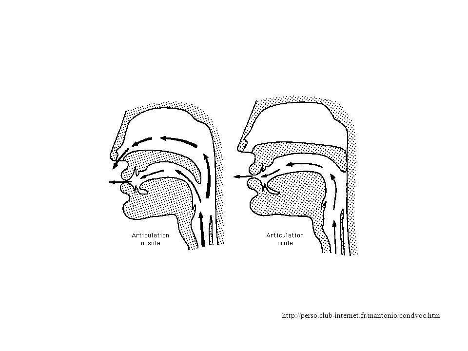 Toutefois, beaucoup de réglages et de variantes… Recherche : « comprendre » le signal vocal et l information qu il contient (et non se contenter d une « simple » comparaison) Comprendre le fonctionnement de la cochlée et du système nerveux auditif