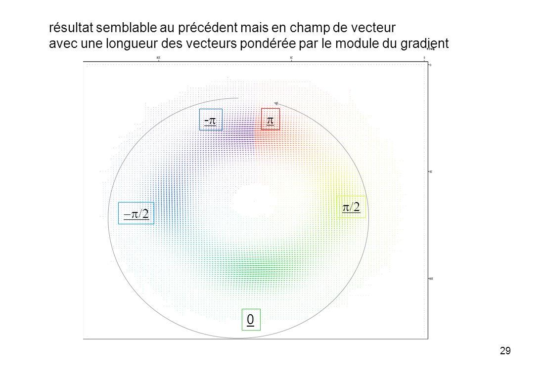 29 résultat semblable au précédent mais en champ de vecteur avec une longueur des vecteurs pondérée par le module du gradient - 0
