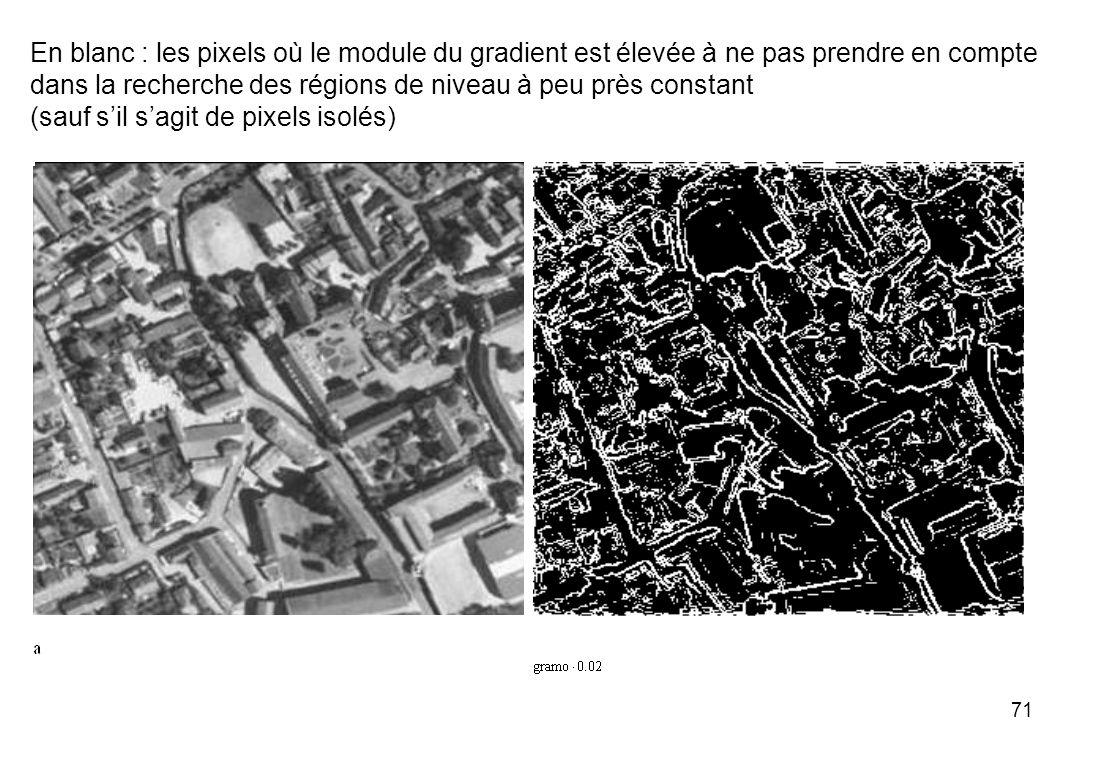 71 En blanc : les pixels où le module du gradient est élevée à ne pas prendre en compte dans la recherche des régions de niveau à peu près constant (s