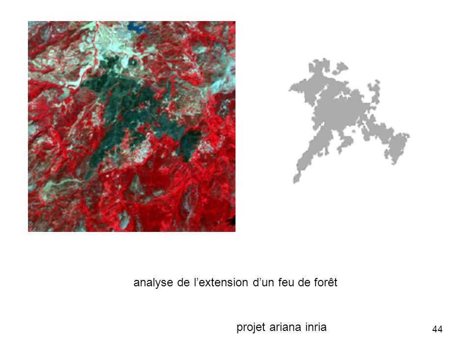 44 analyse de lextension dun feu de forêt projet ariana inria