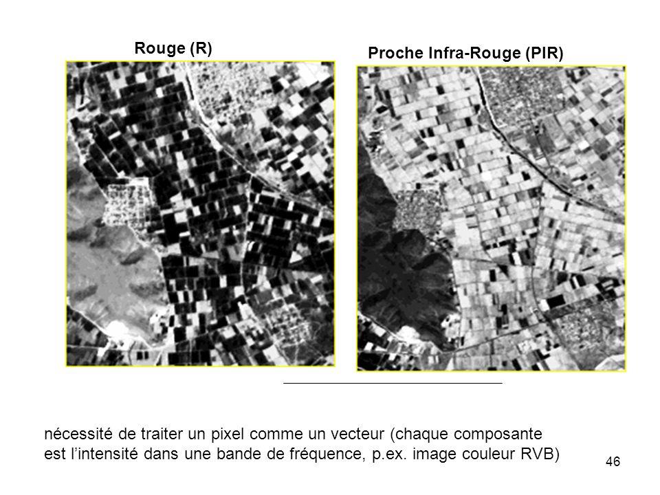 46 Rouge (R) Proche Infra-Rouge (PIR) nécessité de traiter un pixel comme un vecteur (chaque composante est lintensité dans une bande de fréquence, p.