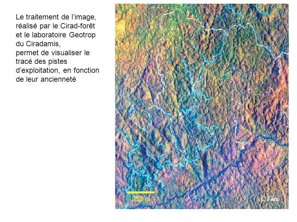 59 Le traitement de limage, réalisé par le Cirad-forêt et le laboratoire Geotrop du Ciradamis, permet de visualiser le tracé des pistes dexploitation,