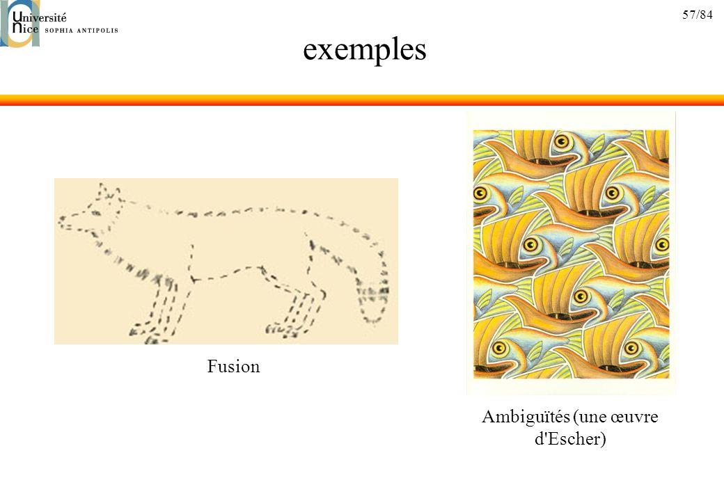 57/84 exemples Fusion Ambiguïtés (une œuvre d'Escher)