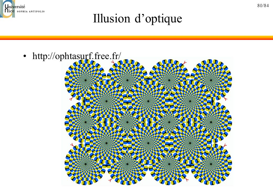 80/84 Illusion doptique http://ophtasurf.free.fr/