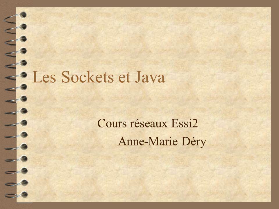 Les Sockets et Java Cours réseaux Essi2 Anne-Marie Déry