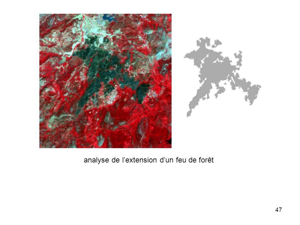 47 analyse de lextension dun feu de forêt