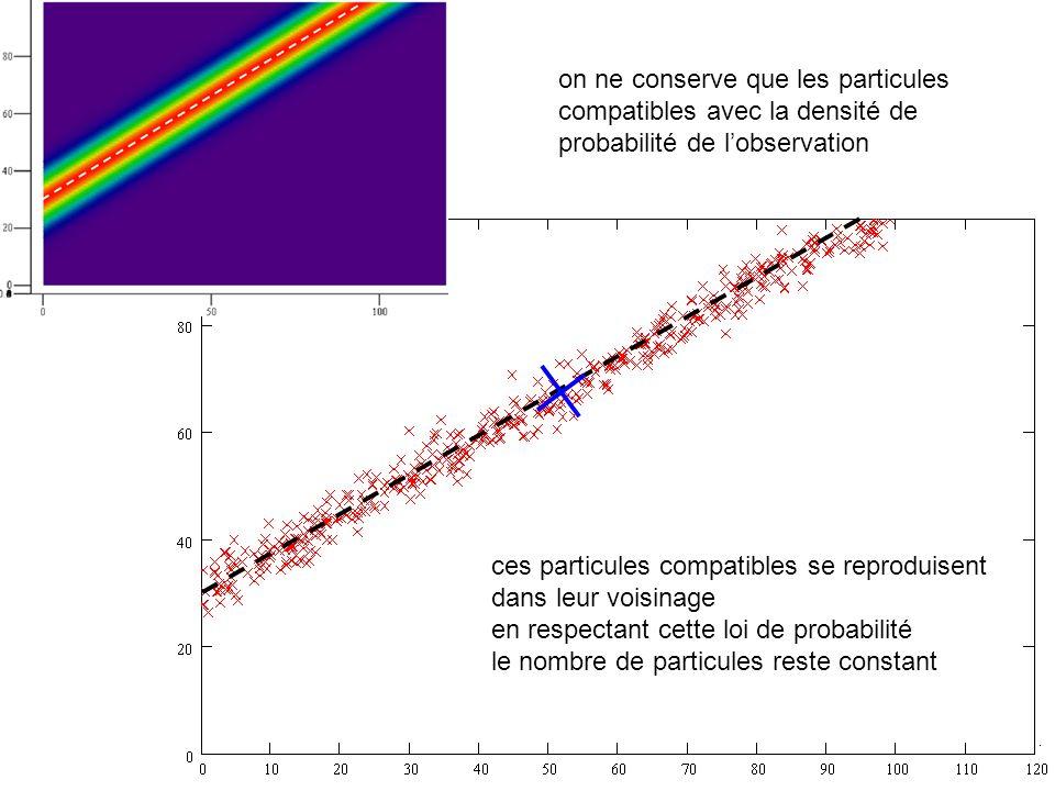 on ne conserve que les particules compatibles avec la densité de probabilité de lobservation ces particules compatibles se reproduisent dans leur voisinage en respectant cette loi de probabilité le nombre de particules reste constant