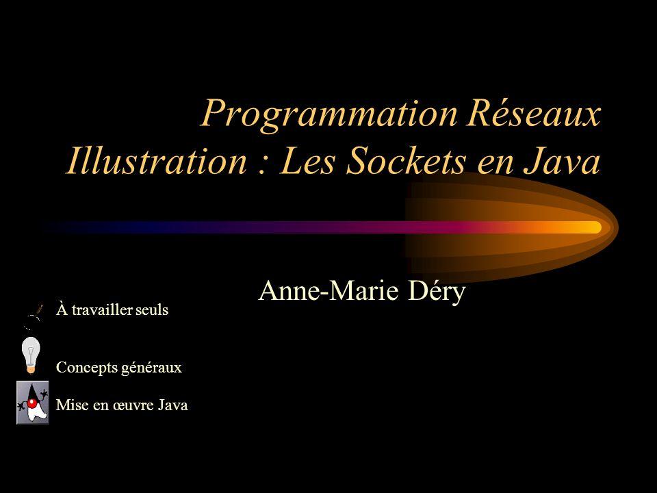 Programmation Réseaux Illustration : Les Sockets en Java Anne-Marie Déry À travailler seuls Concepts généraux Mise en œuvre Java
