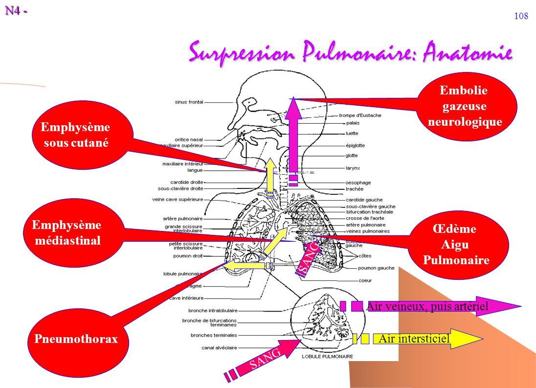 N4 - 108 Surpression Pulmonaire: Anatomie SANG Pneumothorax Emphysème sous cutané Œdème Aigu Pulmonaire Embolie gazeuse neurologique Emphysème médiast