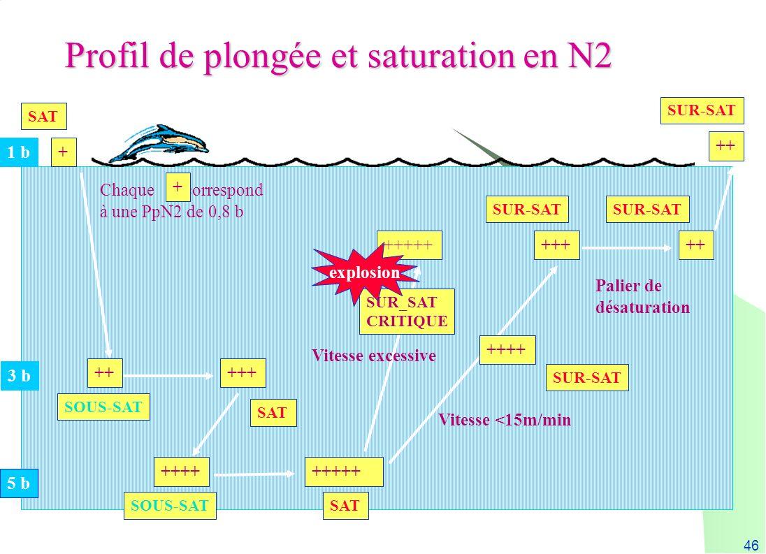 46 SUR_SAT CRITIQUE 3 b 5 b + +++++ +++++++++ SOUS-SAT SAT +++++ ++++ SUR-SAT ++ SUR-SAT 1 b Chaque correspond à une PpN2 de 0,8 b +++ SUR-SAT Palier