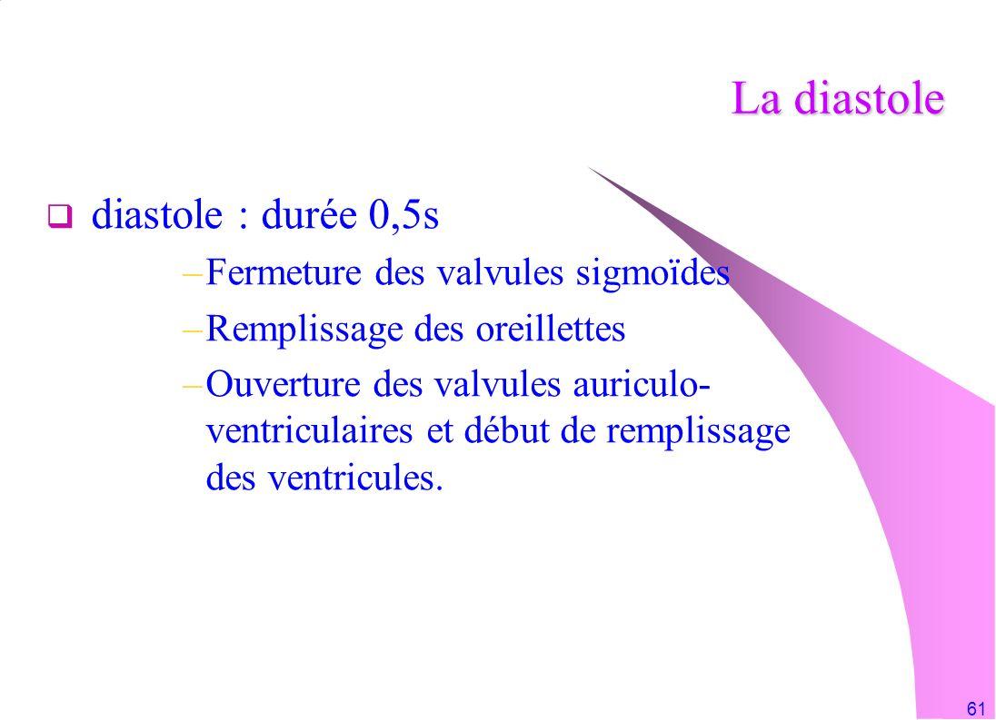 61 La diastole diastole : durée 0,5s –Fermeture des valvules sigmoïdes –Remplissage des oreillettes –Ouverture des valvules auriculo- ventriculaires e
