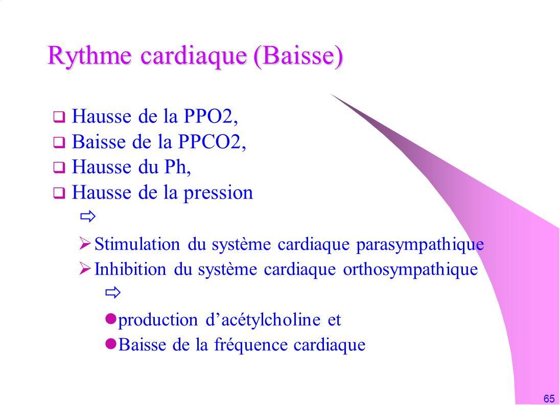 65 Hausse de la PPO2, Baisse de la PPCO2, Hausse du Ph, Hausse de la pression Stimulation du système cardiaque parasympathique Inhibition du système c