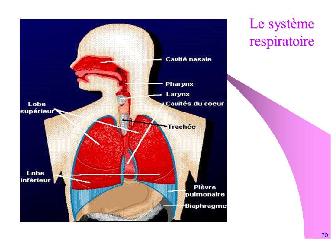 70 Le système respiratoire