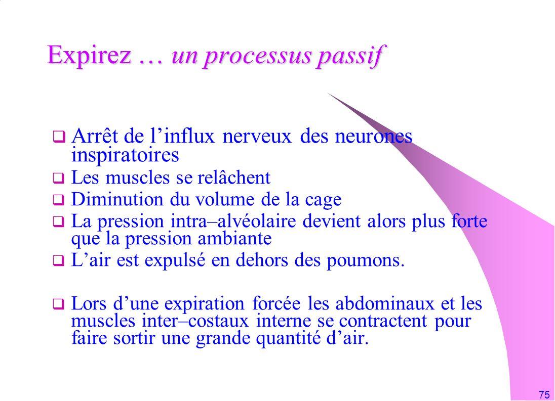 75 Expirez … un processus passif Arrêt de linflux nerveux des neurones inspiratoires Les muscles se relâchent Diminution du volume de la cage La press