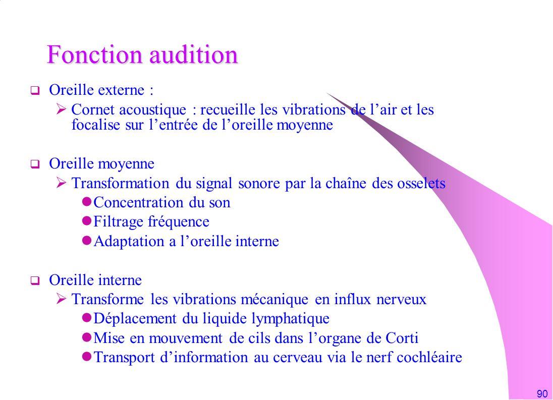 90 Fonction audition Oreille externe : Cornet acoustique : recueille les vibrations de lair et les focalise sur lentrée de loreille moyenne Oreille mo