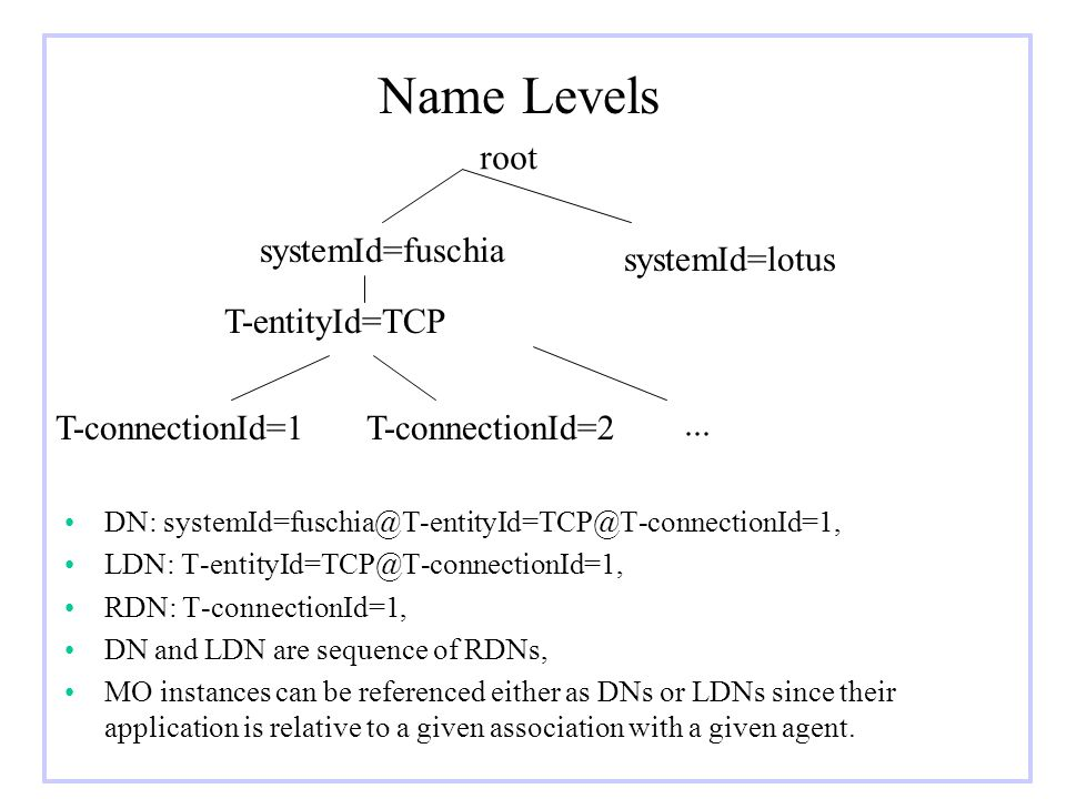 Name Levels DN: systemId=fuschia@T-entityId=TCP@T-connectionId=1, LDN: T-entityId=TCP@T-connectionId=1, RDN: T-connectionId=1, DN and LDN are sequence