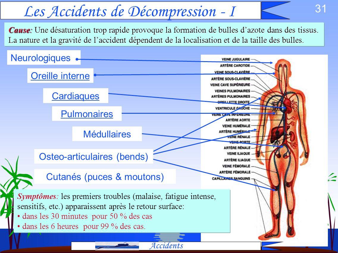 30 Accidents ADD Accidents CANNES JEUNESSE PLONGEE Paul Franchi Février 1997 – révisé Nov 2002 Cutané Neurologique & Médulaire Osteo-articulaire Oreil