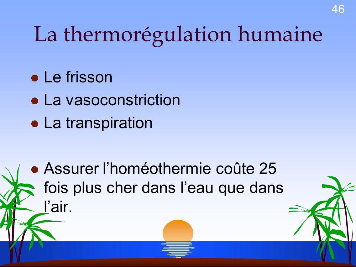 45 Le froid (hypothermie) Les transferts de châleur en plongée Conduction: entre deux corps immobiles ayant de températures différentes. Leau infiltré